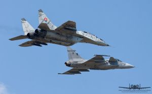 MiG-29UBS and JAS-39C Gripen by Thunderbolt120