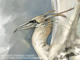 Northern Gannet Dragon - Closeup by LeccathuFurvicael