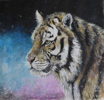 Winter Tiger by acrylicwildlife