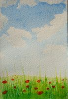 Poppys clouds and summer by nnicc