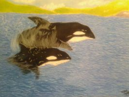 Orcas in the Waves by Spottedleaf24