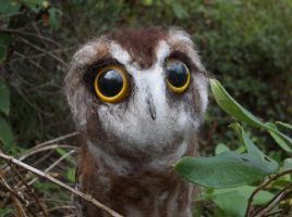 Needle Felted Saw-Whet Owl by FeatheredFauna
