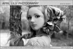 Website - April Lilly by AYDesign