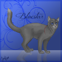 Bluestar of ThunderClan by xxMoonwish