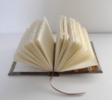 My First Hand-bound Book (open) by ladyiolanthe