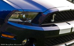 2010 Shelby Mustang Nose by supercrazzy