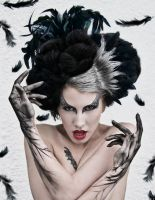 Black Swan by Ryo-Says-Meow