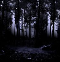 Woods III premade BG by StarsColdNight