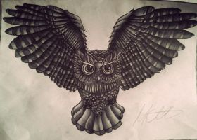 AN Owl by Marchonon