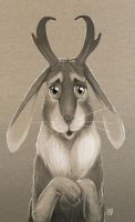 Jackalope by ArtofJefferyHebert