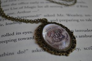 Hogwarts Crest Necklace by PugsAndTea