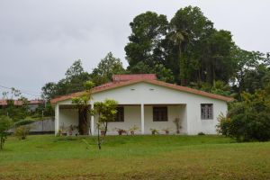 House and vegetation of Martinique by A1Z2E3R