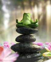Zen Frog Full by OmarJason