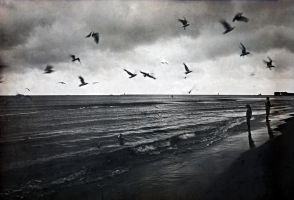 silent before the storm... by xPorcelainHeartx