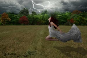 In the middle of the storm by BirmanCat