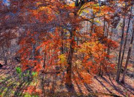 00-CarterCaveStatePark-2014-IMG-6348-HDR-WP-Master by darkmoonphoto