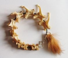 Rabbit Vertebrae Bracelet SOLD by Killslay-steelclaw