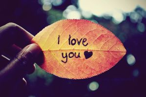 I love you... by this-is-the-life2905