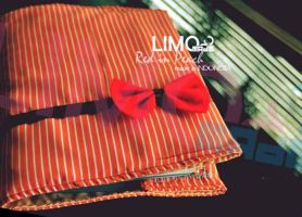 Red in Peach - Handmade Cover Book by LIMOmade