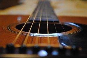Steel Strings on a Wooden Frame by arevolutionarydevice