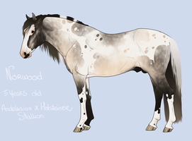 Norwood ref wip1 by BH-Stables