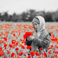 Poppy Field Swap Color by Daxos