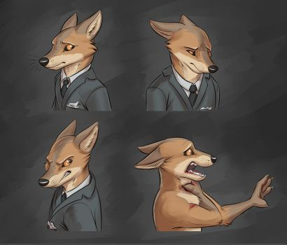 Commission: Expression Sheet for Big-Bad-Rocket by Temiree