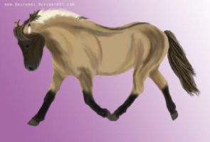 Digital painting : Pony by Drifandi