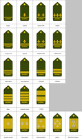 Military ranks of the Republic of Quebec by kyuzoaoi