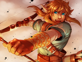 THE LEGEND OF ZELDA WII U by Aishishi
