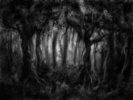 Dark forest by artoftas