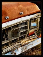 Old Ford Truck by Tao2Eden