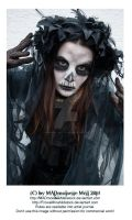 Halloween 2014 SPECIAL Skull Lady Stock 002 by MADmoiselleMeliStock