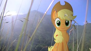 [MLP en vrai] Applejack  Mountain by VBASTV