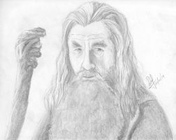 Gandalf The Gray by GhostHead-Nebula