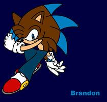 Brandon the Hedgehog (Another Cousin Of Mine) by InsaneVaporeon