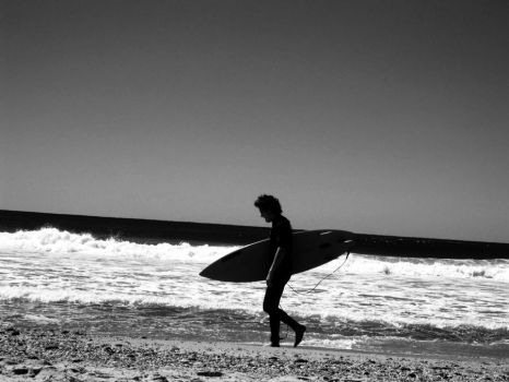Surfs Up by bismad