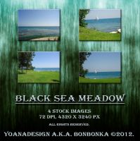 Black Sea Meadow by bonbonka