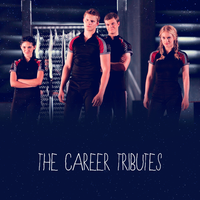 The Career Tributes(THG Gif) by justadistrict12girl