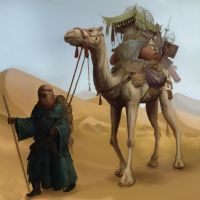 Camel by Jumpei