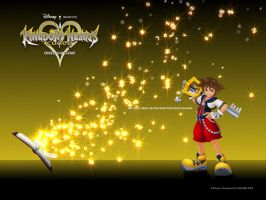 Kingdom hearts -+Coded+ by Paperimage