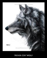 Never Cry Wolf by madlion8