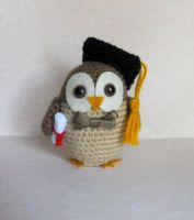 Graduation owl by missdolkapots