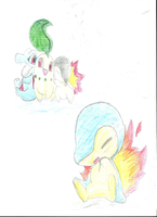 2nd Starter Pokemon by lemonthecombustible