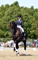 Dressage 41 by JullelinPhotography