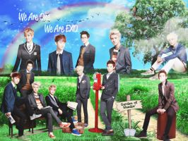 23.9 WALLPAPER EXO #2  - BY SUGROW by suetics