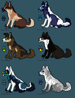 Adopts ONE LEFT by Rinermai