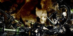 Black Templars colored 3 by MrDue