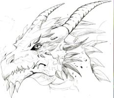 my 1st dragon sketch by trunks24