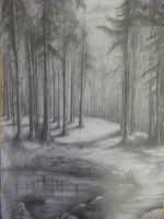 forest by amfor4